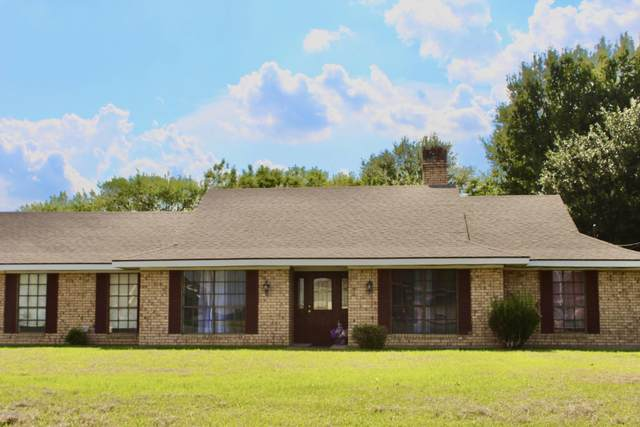 1618 Wildcat Drive, Abbeville, LA 70510 (MLS #20006941) :: Keaty Real Estate