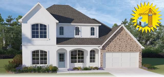 227 New Trails Lane, Lafayette, LA 70508 (MLS #21004144) :: Keaty Real Estate