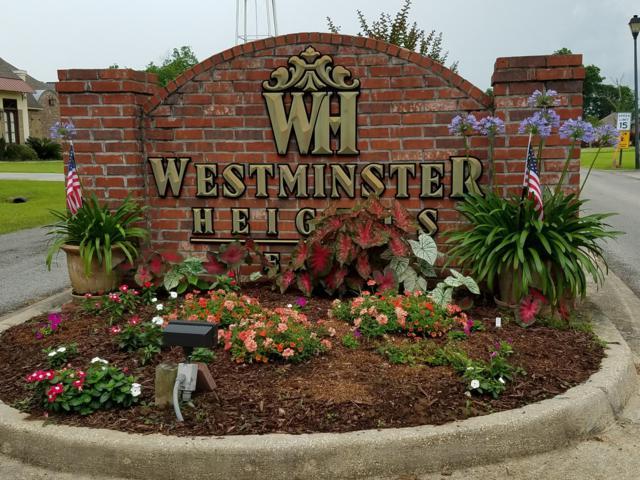 63 Petite Rue De Landon, Opelousas, LA 70570 (MLS #16005369) :: Keaty Real Estate