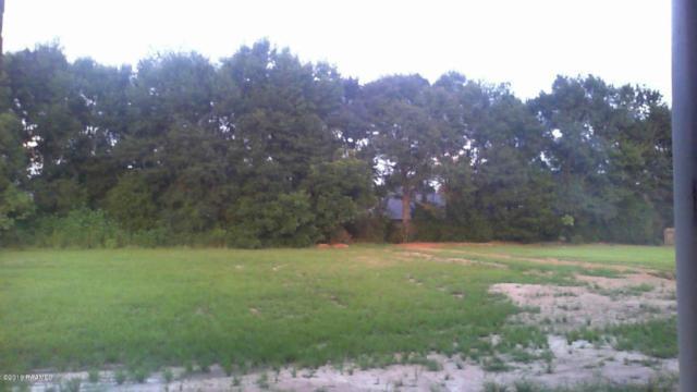Lot 37 Christian Point, Opelousas, LA 70570 (MLS #16006097) :: Keaty Real Estate