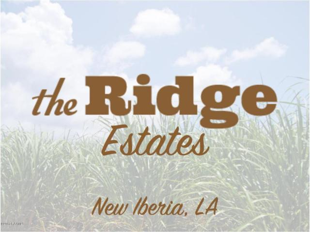7813 Fremin Road, New Iberia, LA 70560 (MLS #17001376) :: Keaty Real Estate