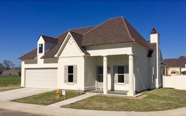 117 Drifting Sands Lane, Lafayette, LA 70503 (MLS #17005463) :: Keaty Real Estate
