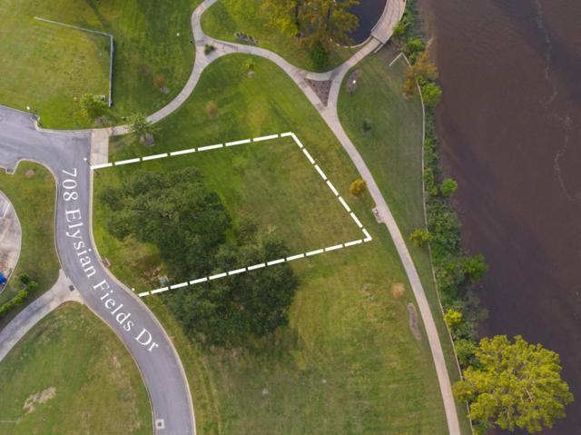 708 Elysian Fields Drive, Lafayette, LA 70508 (MLS #17008340) :: Keaty Real Estate