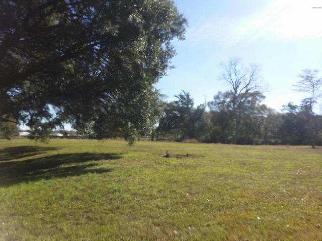 300 Winsor Drive, Lafayette, LA 70507 (MLS #17011564) :: Keaty Real Estate