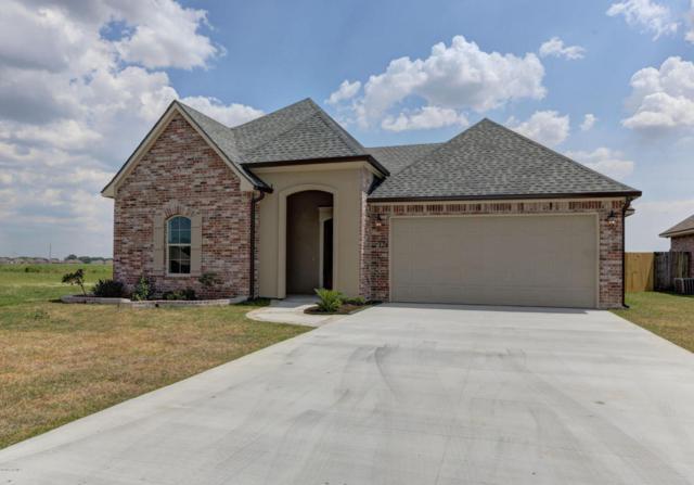 124 Tall Oaks Lane, Youngsville, LA 70592 (MLS #18004504) :: Keaty Real Estate