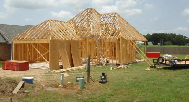 146 Rue Village, Maurice, LA 70555 (MLS #18007159) :: Cachet Real Estate