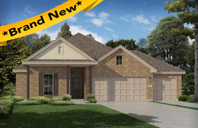 207 Holly Grove Lane, Youngsville, LA 70592 (MLS #18007190) :: Red Door Realty