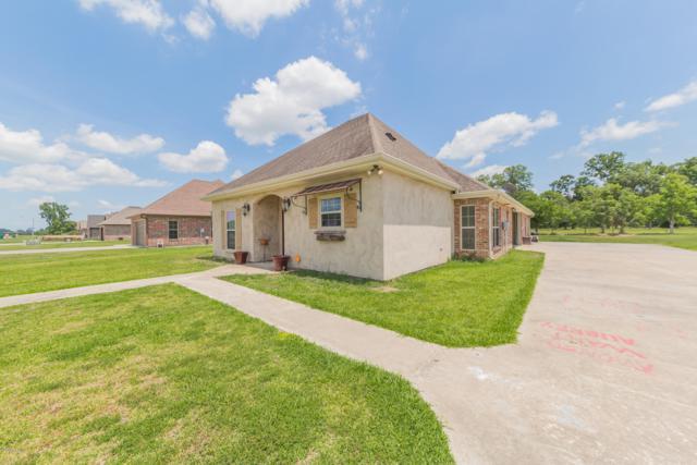 1045 Bunker Drive, St. Martinville, LA 70582 (MLS #18007796) :: Keaty Real Estate