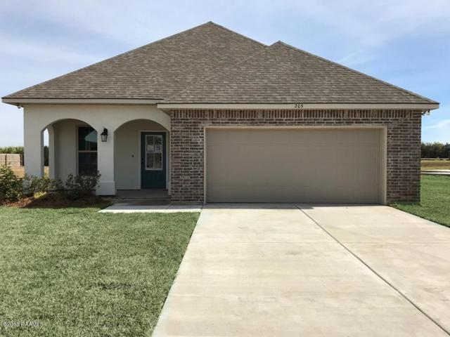205 Hutton Lane, Youngsville, LA 70592 (MLS #18008127) :: Keaty Real Estate