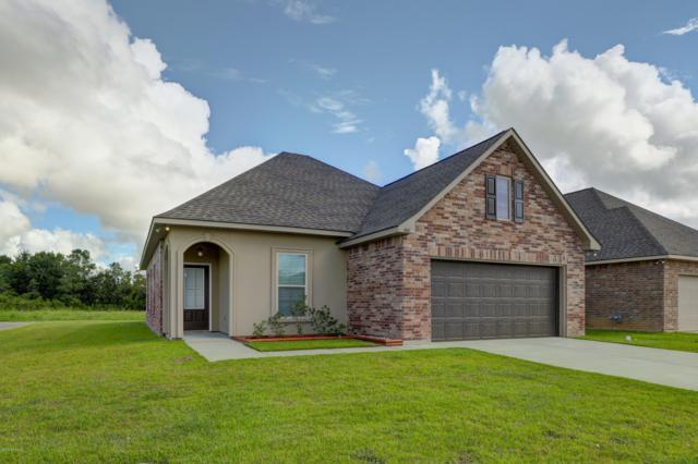 301 Gray Birch Loop, Youngsville, LA 70592 (MLS #18008848) :: Keaty Real Estate