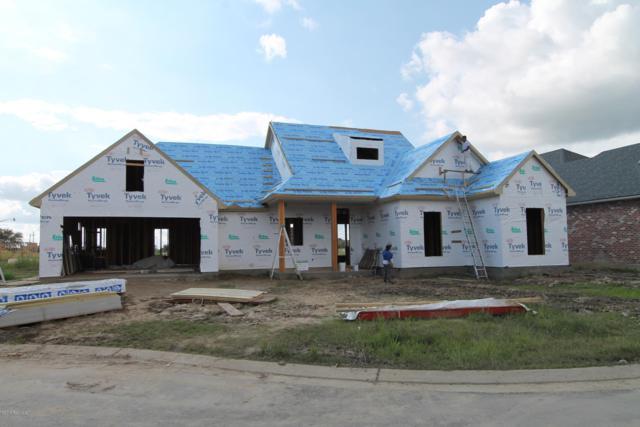 201 Santander Drive, Youngsville, LA 70592 (MLS #18010295) :: Keaty Real Estate