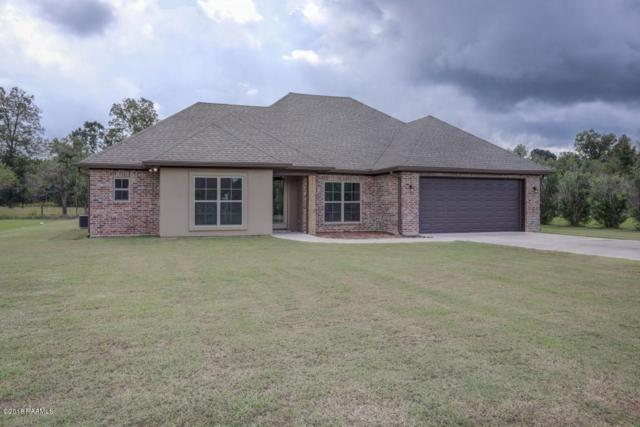 1051 Bunker Drive, St. Martinville, LA 70582 (MLS #18010601) :: Red Door Team | Keller Williams Realty Acadiana