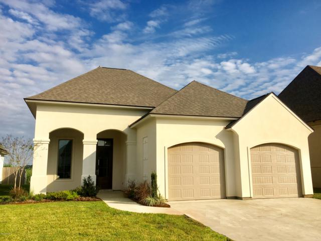 313 Cypress View Drive, Youngsville, LA 70592 (MLS #18011547) :: Cachet Real Estate