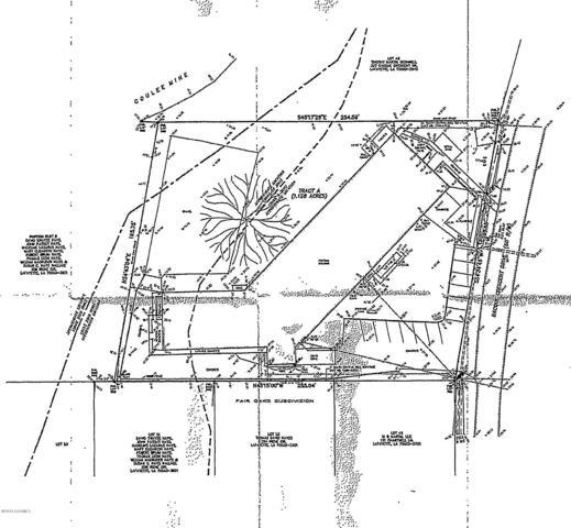 325 Bacque Crescent Drive, Lafayette, LA 70503 (MLS #19000358) :: Keaty Real Estate