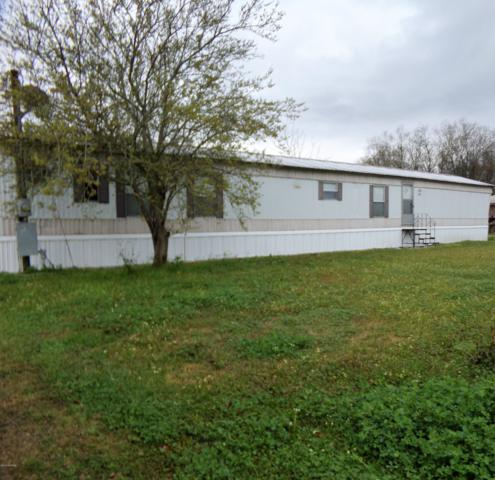 201 Live Oak Road, Arnaudville, LA 70512 (MLS #19002132) :: Keaty Real Estate