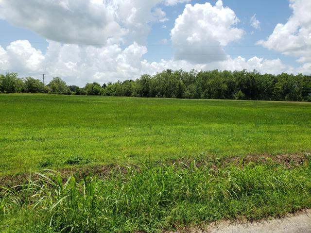 2 Meche Road, Rayne, LA 70578 (MLS #19007205) :: Keaty Real Estate