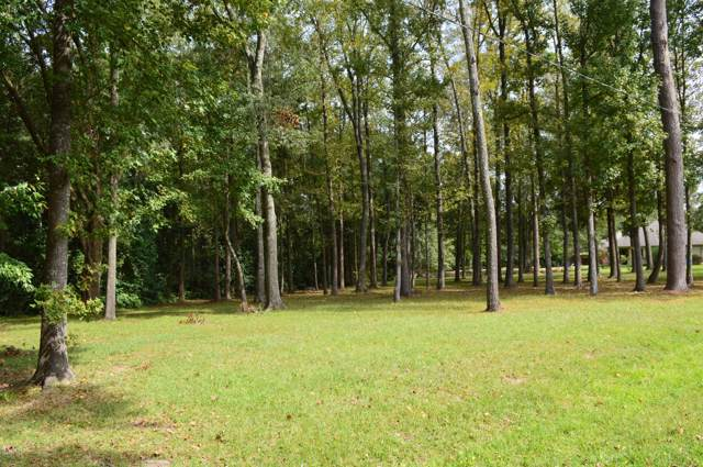 217 Leonpacher Road, Lafayette, LA 70508 (MLS #19009454) :: Keaty Real Estate