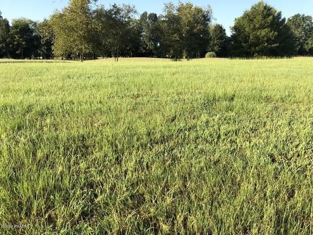 117 Farmview Drive, Carencro, LA 70520 (MLS #20006408) :: Keaty Real Estate