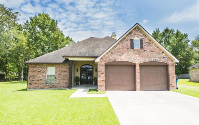 107 Spring Lake Circle, Lafayette, LA 70508 (MLS #17008540) :: Keaty Real Estate