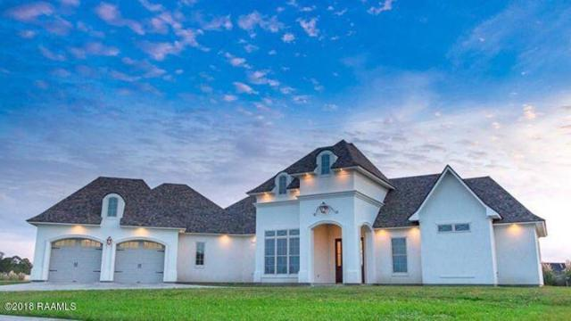 316 Sugartrace Lane, New Iberia, LA 70563 (MLS #18000867) :: Keaty Real Estate