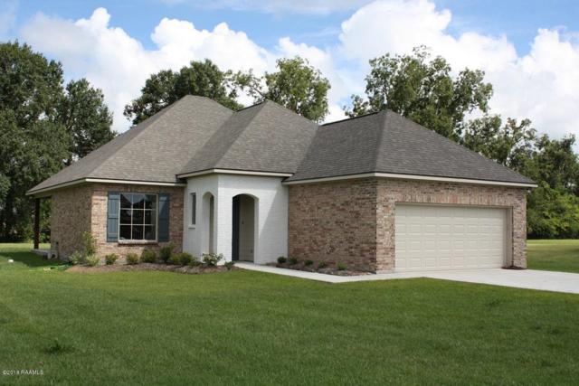 1044 Sandy Lane, Arnaudville, LA 70512 (MLS #18004034) :: Keaty Real Estate