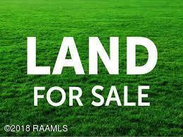 92 Chardonnay Drive, Opelousas, LA 70570 (MLS #16011399) :: Keaty Real Estate