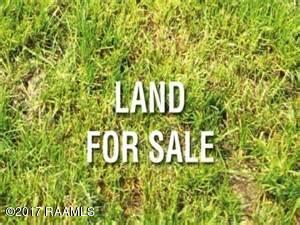 2373 Abbeville Hwy, Rayne, LA 70578 (MLS #17005966) :: Keaty Real Estate