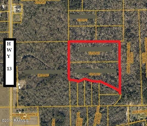 Eunice Hwy, Crowley, LA 70526 (MLS #17007607) :: Keaty Real Estate