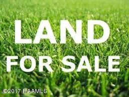 Lot 2 Rixby Manuel Road, Ville Platte, LA 70586 (MLS #17009627) :: Keaty Real Estate