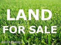 Tbd Sandy Lane Lane, Arnaudville, LA 70512 (MLS #18007333) :: Red Door Realty
