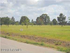 Hwy 167, Abbeville, LA 70510 (MLS #18011609) :: Keaty Real Estate