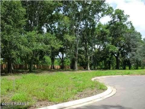 4 Elias Drive, New Iberia, LA 70560 (MLS #20010286) :: Keaty Real Estate