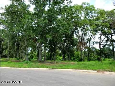 8 Elias Drive, New Iberia, LA 70560 (MLS #20010290) :: Keaty Real Estate