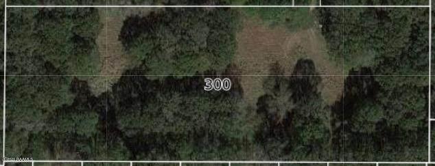 300 Kate Road, Carencro, LA 70520 (MLS #21001138) :: Keaty Real Estate