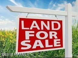 Tbd Loreauville Road, New Iberia, LA 70560 (MLS #16004161) :: Keaty Real Estate