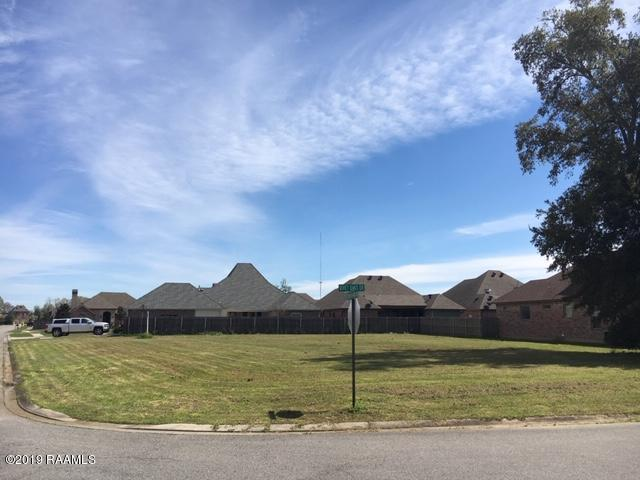 101 Quiet Oaks Drive, Youngsville, LA 70592 (MLS #19002779) :: Keaty Real Estate