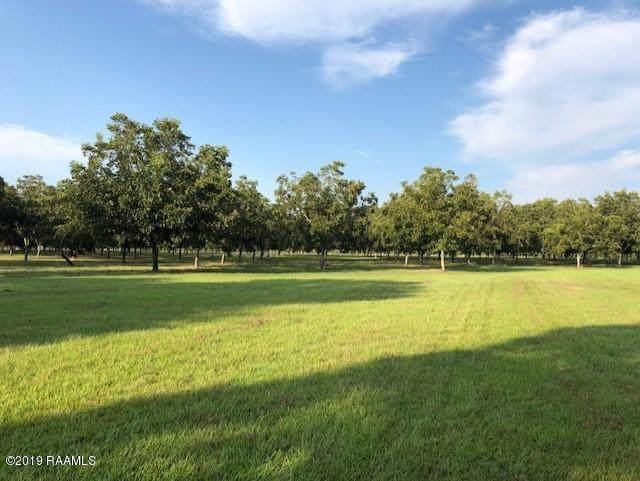 Forest Avenue, Ville Platte, LA 70586 (MLS #19009239) :: Keaty Real Estate
