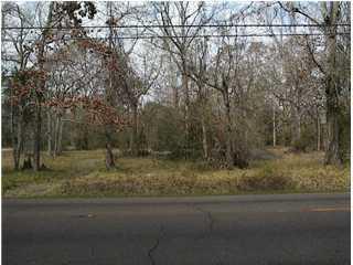 203 Chitimacha Trail, Baldwin, LA 70514 (MLS #6116124) :: Keaty Real Estate