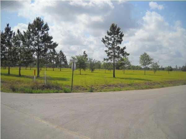 Hwy 167, Abbeville, LA 70510 (MLS #11226336) :: Keaty Real Estate