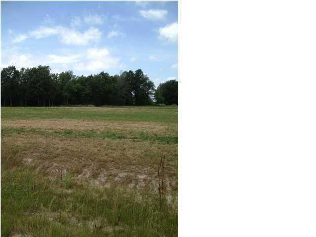 120 Country Meadows, Church Point, LA 70525 (MLS #12234439) :: Keaty Real Estate