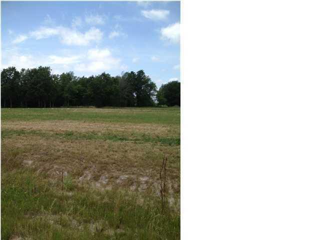 207 Country Meadows, Church Point, LA 70525 (MLS #12234496) :: Keaty Real Estate