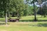 1 Bridle Creek Trail - Photo 4