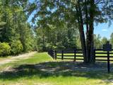 Lot 19 P3a Parque Lane - Photo 4