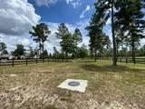 576 Dasher Circle - Photo 54