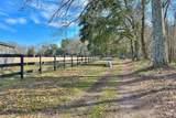 428 Hopeland Farm Drive - Photo 38