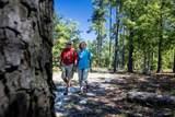 156 Pinyon Pine Loop - Photo 3
