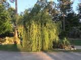 3091 Chewacla Lane - Photo 50