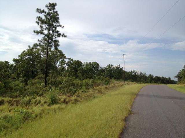 000 Bethcar Church Road, WAGENER, SC 29164 (MLS #102286) :: Shannon Rollings Real Estate