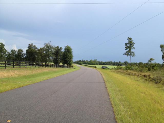 560 Bethcar Church Road, WAGENER, SC 29164 (MLS #102287) :: Shannon Rollings Real Estate