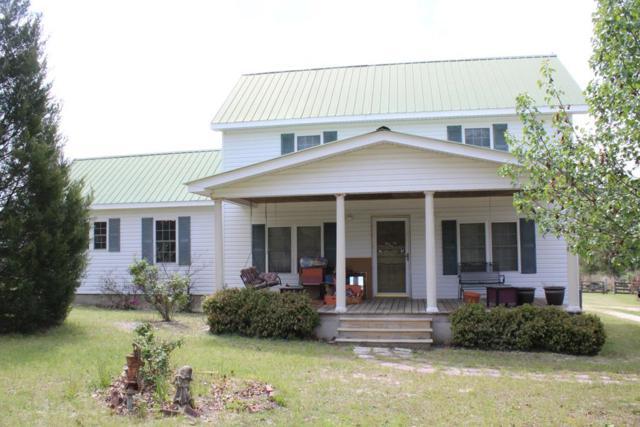 196 Paul Road, MONETTA, SC 29105 (MLS #102406) :: Shannon Rollings Real Estate